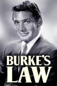 Burkes Gesetz