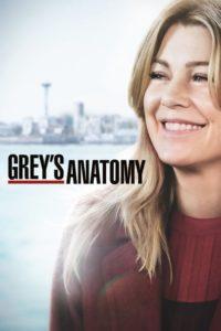 Grey's Anatomy: Season 15