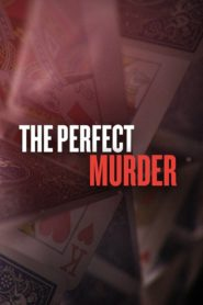 Ein perfekter Mord