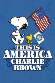 Das ist Amerika, Charlie Brown
