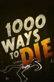 1000 Wege ins Gras zu beissen